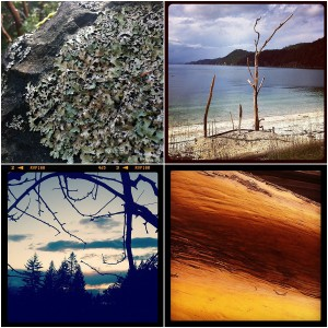 Colours and textures of Galiano